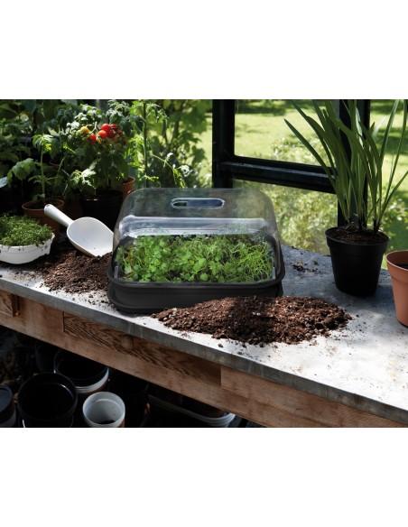 green basics grow kit allin1