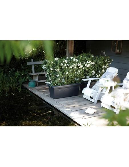 green basics garden xxl