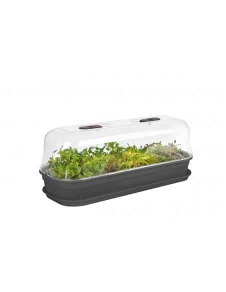 green basics grow tray