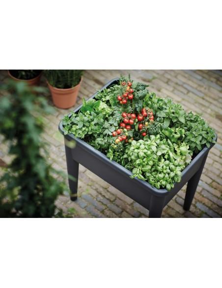 green basics grow table xxl