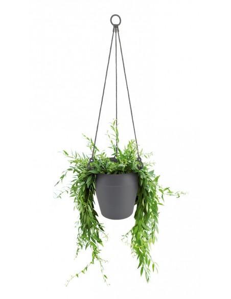 loft urban hanging basket