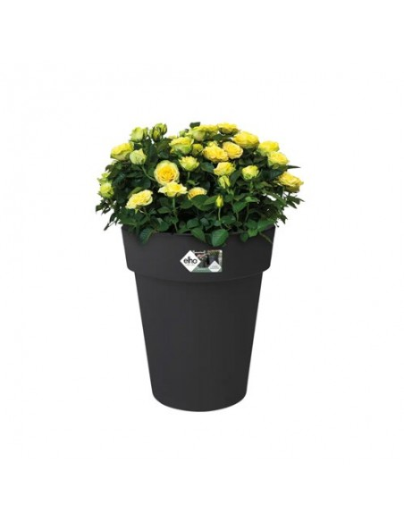 green basics top planter high