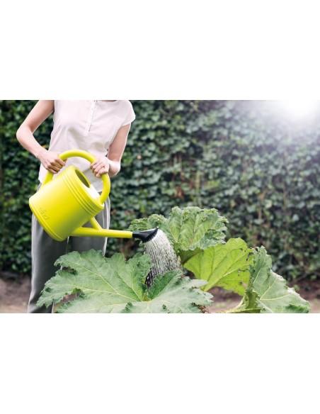 green basics watering can